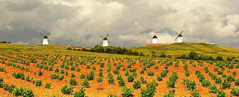 vino-tierra-castilla