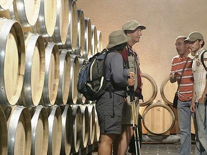 turistas junto a barricas en su visita a una bodega