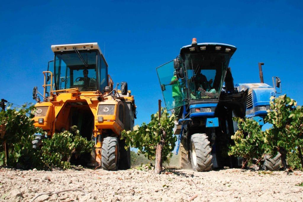 dos camiones y maquinas de vendimia en viñedos