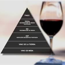 infografía con una copa de vino y una pirámide con los requisitos para elaborar un vino de pago