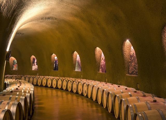 bodega con diversos activos vitivinícolas como bodega vino